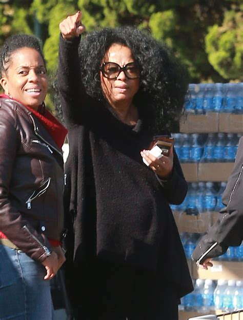 Diana Ross - Grocery Shopping at Bristol Famrs in West
